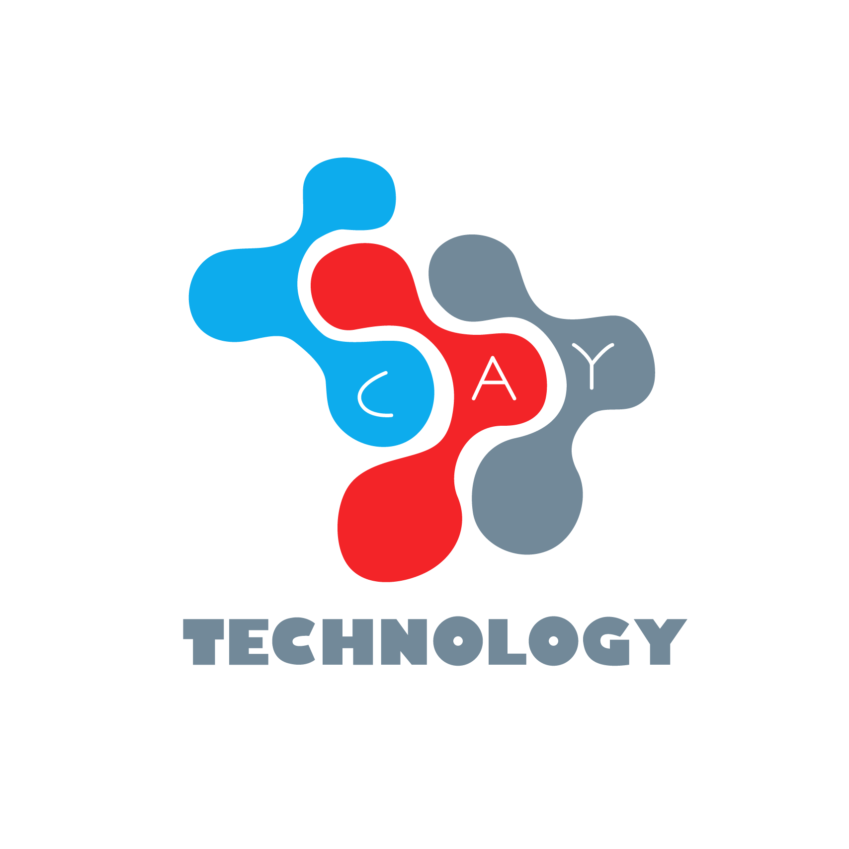 Cay Technology – Centre de Services de Réparation Saint Quentin